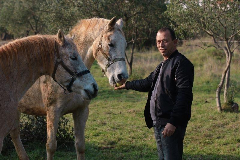 OPG Kero konji i gliste 1